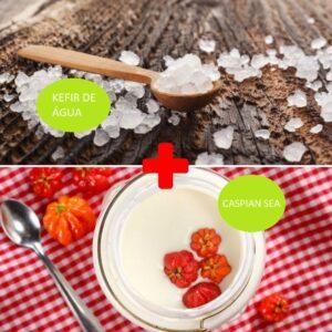 Combo – Kefir de Água + Cáspio Iogurte Infinito – com Frete Grátis
