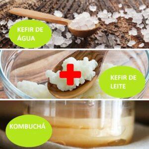 Combo – Kefir de Leite + Kefir de Água + Kombuchá – com Frete Grátis